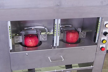 apple slicer (2)
